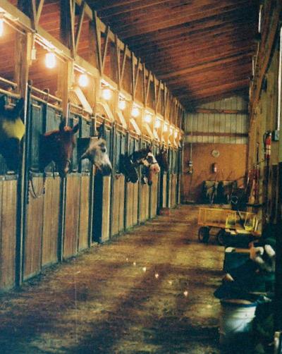 Boarding Razor Creek Horse Stables